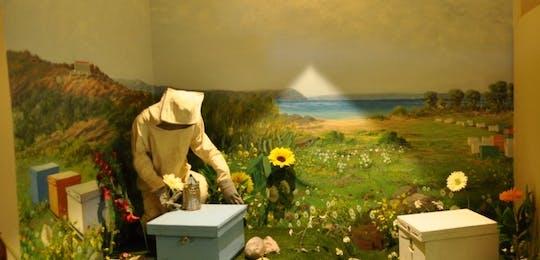 Bee Museum