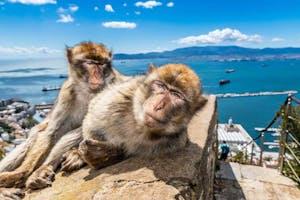 Gibraltar Rock Visit Express