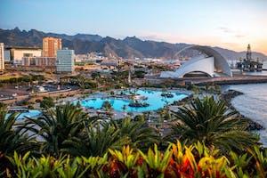Excursion to Tenerife