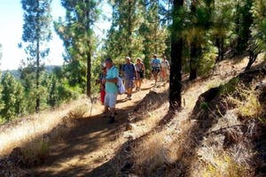 Trekking & Hiking (Royal Path) + Los Gigantes by Boat