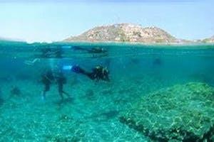Scuba Diving, Snorkelling