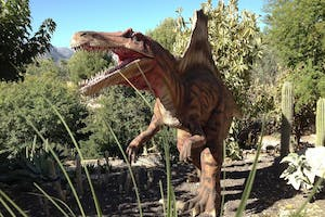 Jurassic Adventure with BBQ & Transport from Albir/Benidorm